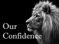 Our Confidence